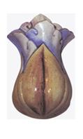 Ceramica celta