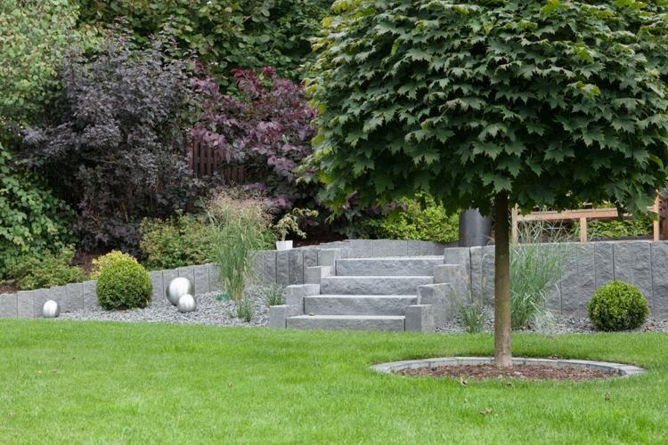 steing rten steine und steingartenpflanzen eine. Black Bedroom Furniture Sets. Home Design Ideas