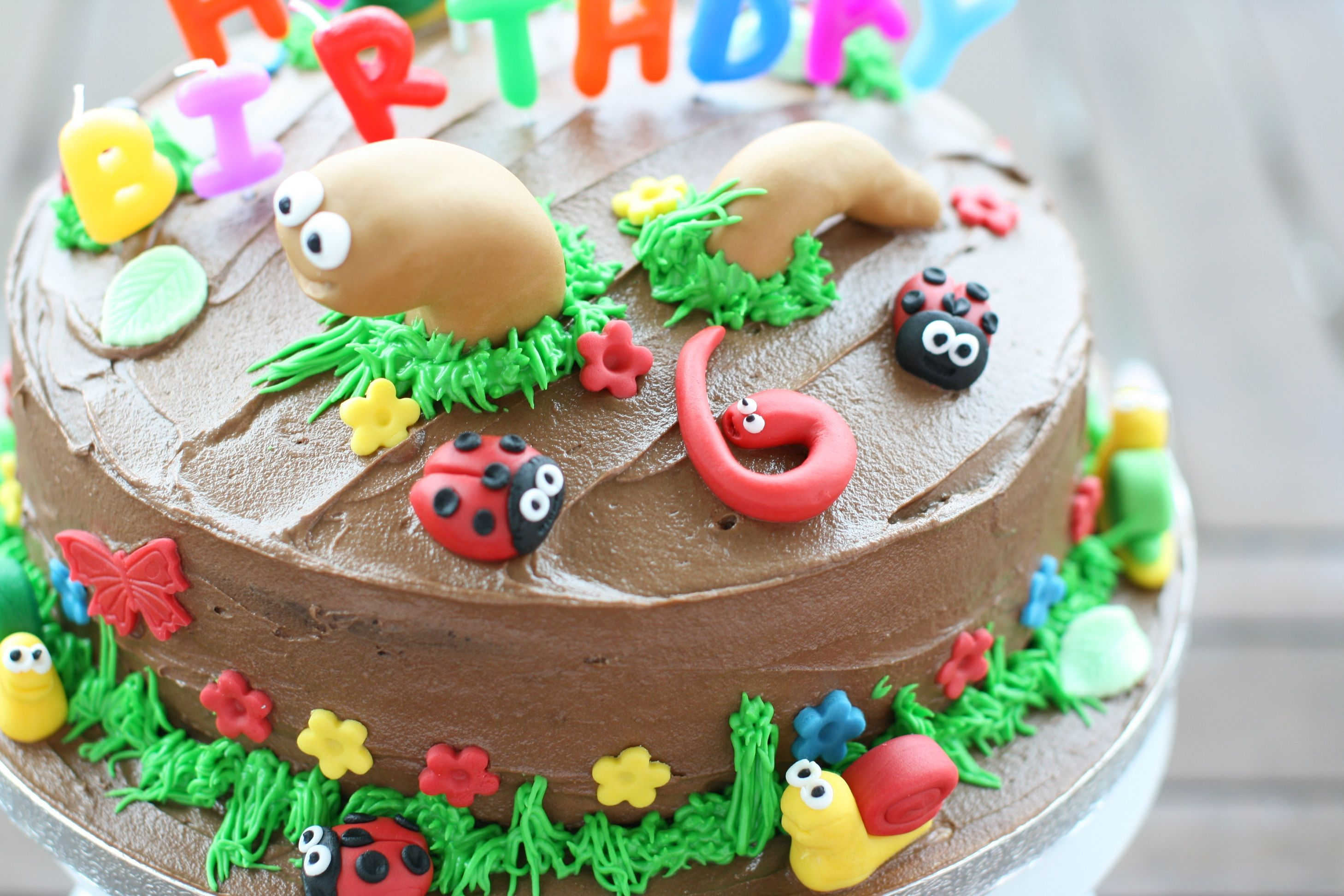 When my friend asked me to make a birthday cake for his six year old daughter I wasn't expecting the request to be for a cake covered in worms, snails and bugs. I made a chocolate cake and chocolate butter icing to make it look all muddy and then covered the cake in fondant snails …