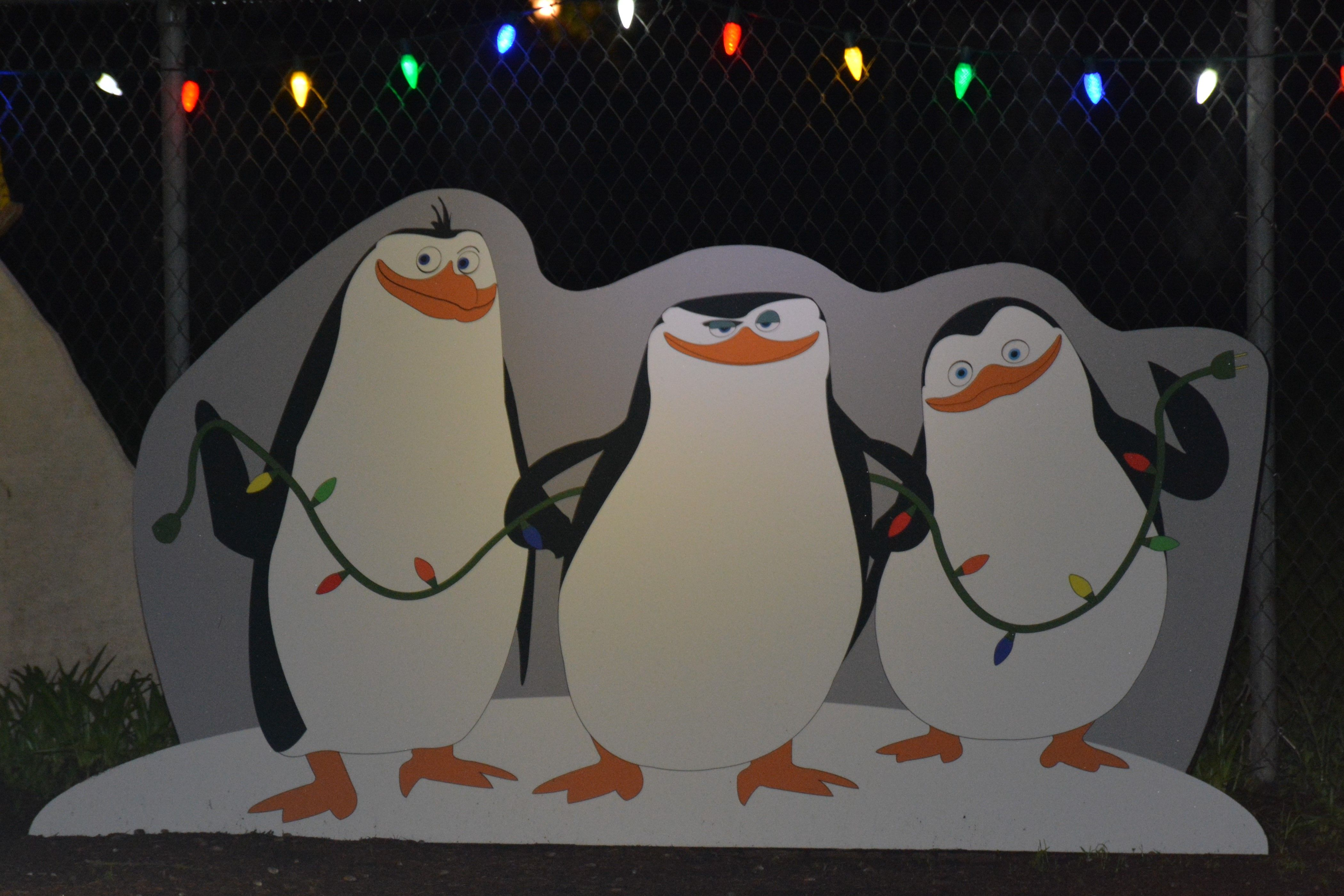 Penguins of Madagascar. Penguins of madagascar, Olaf the