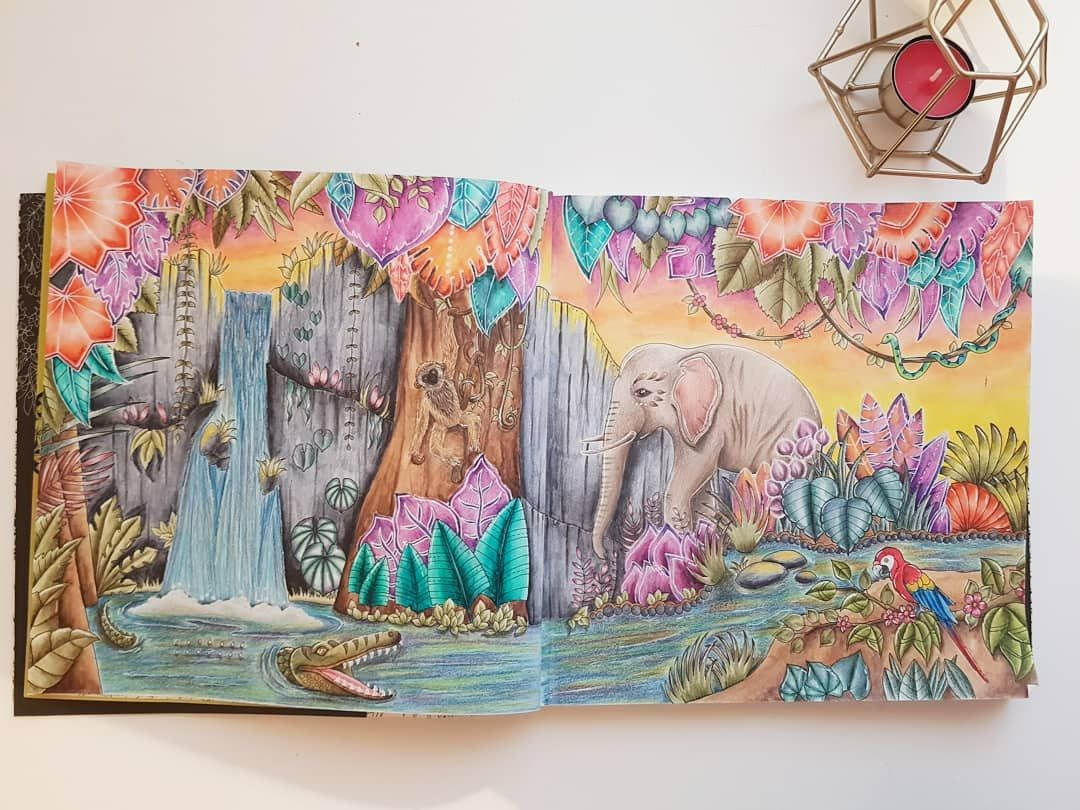 pin auf johanna basford coloring books