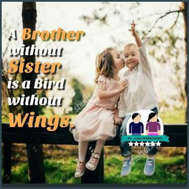 Well Said Sister Quotes Brother N Sister Quotes Brother Sister Quotes