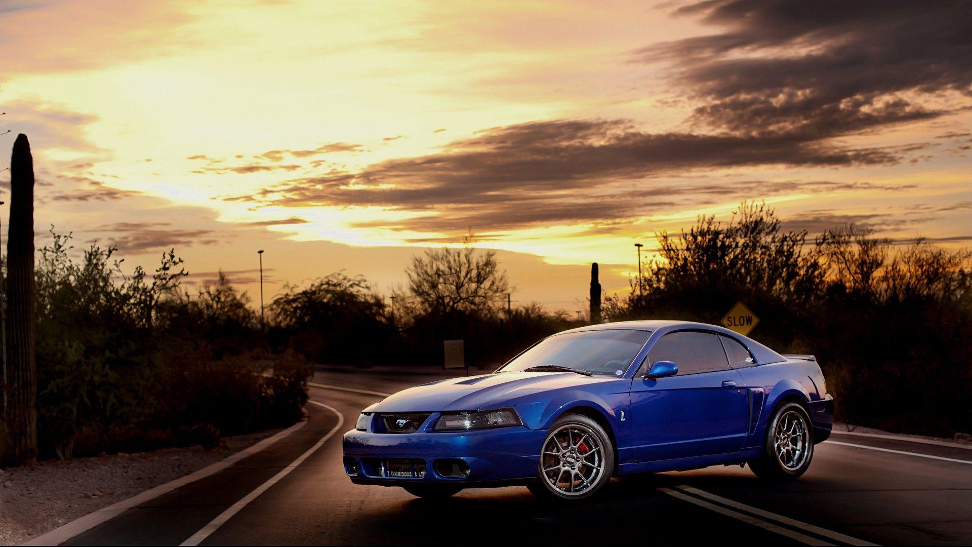Cobra Terminator Wallpaper Mustang Cobra Ford Mustang Cobra Ford Mustang
