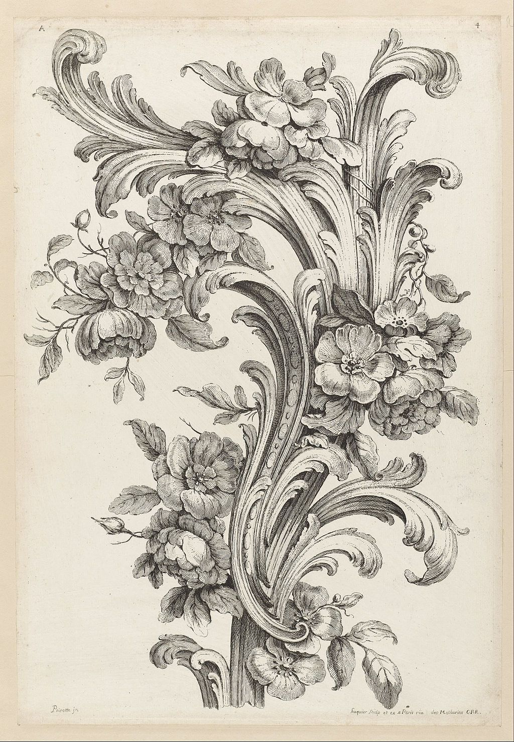 Acanthus Leaves Acanthus Scroll Engraving Acanthus Leaf