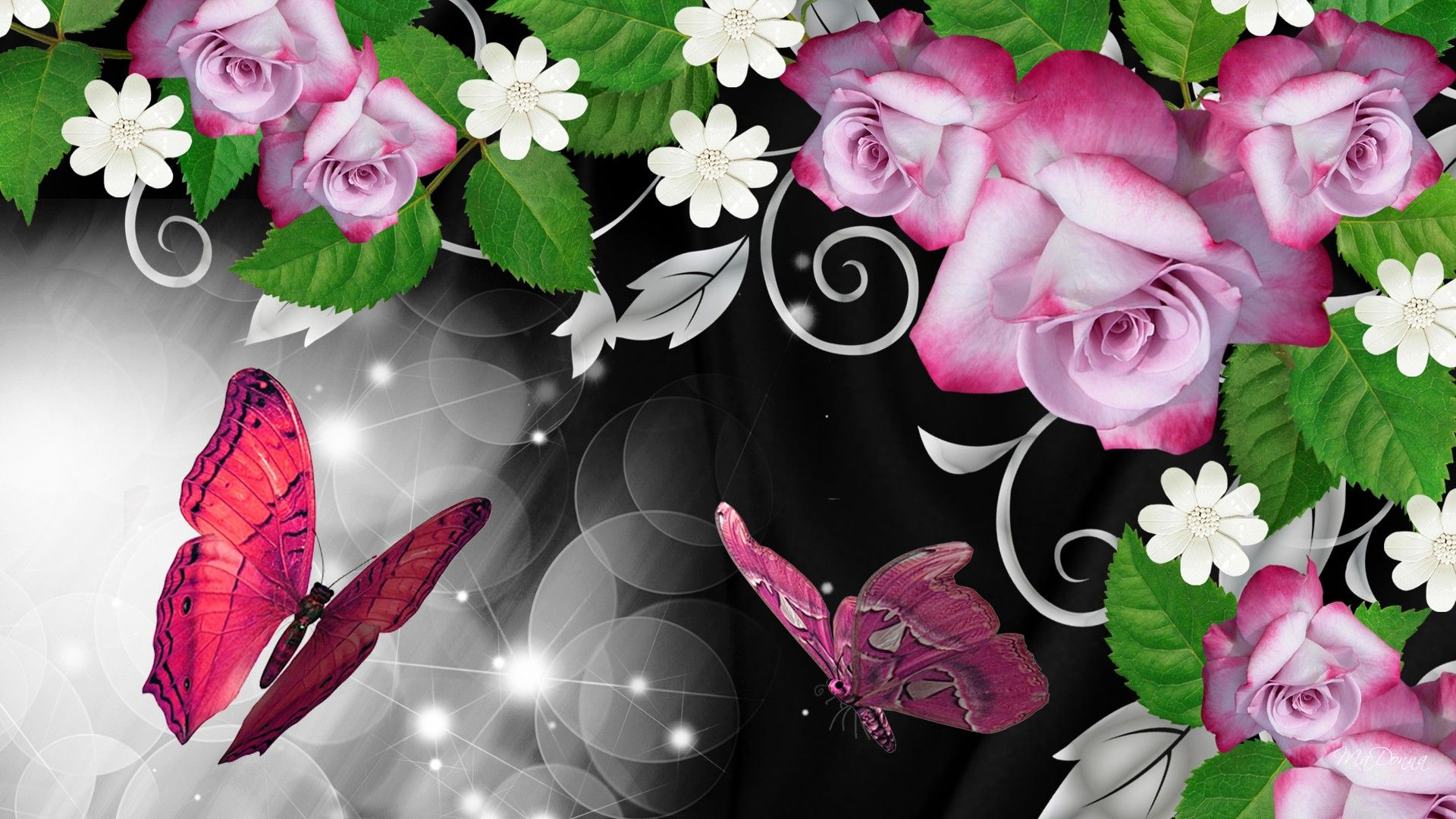 Hd Pink Roses Butterfly Shine Wallpaper Download Free 53783 Butterfly Wallpaper Butterfly Background Pink Flowers