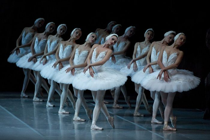 Swan Lake (Mikhailovsky Theatre, ballet) - Buy Tickets Online | RussianBroadway.com