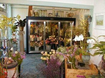 Flower shop fridge... | LITTLE SHOP OF HORRORS | Pinterest