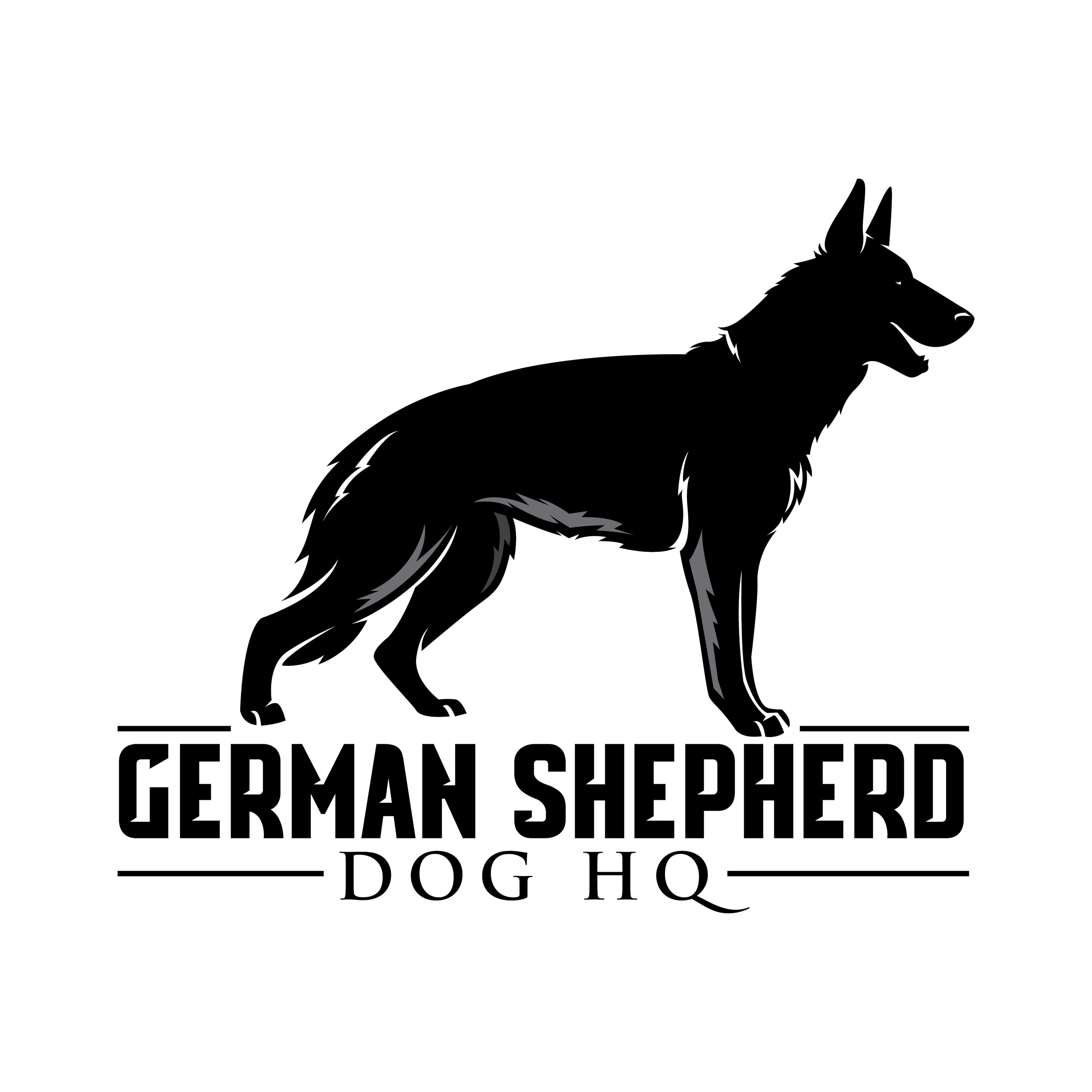 Guide To Crate Training A German Shepherd Puppy German Shepherd