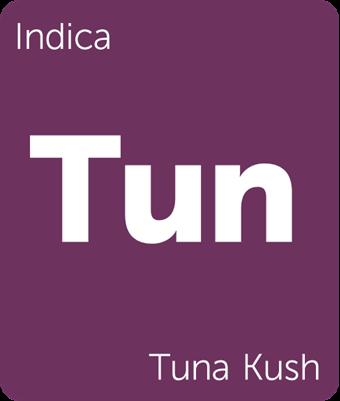 Tuna Kush | Bud Chart | Cannabis, Medical cannabis, Materia