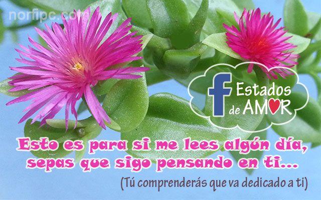 Palabras De Amor Para Actualizar Mi Estado De Facebook Palabras De Amor Situacion Sentimental Imagenes De Enamorados