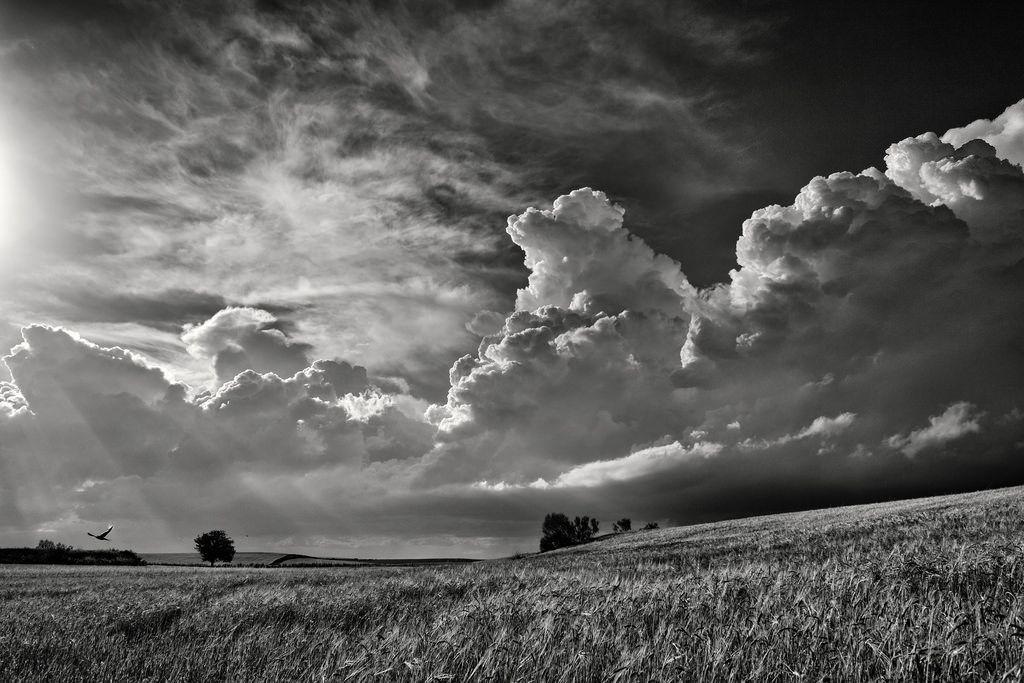 La tormenta by una cierta mirada http://flic.kr/p/Eevcgu