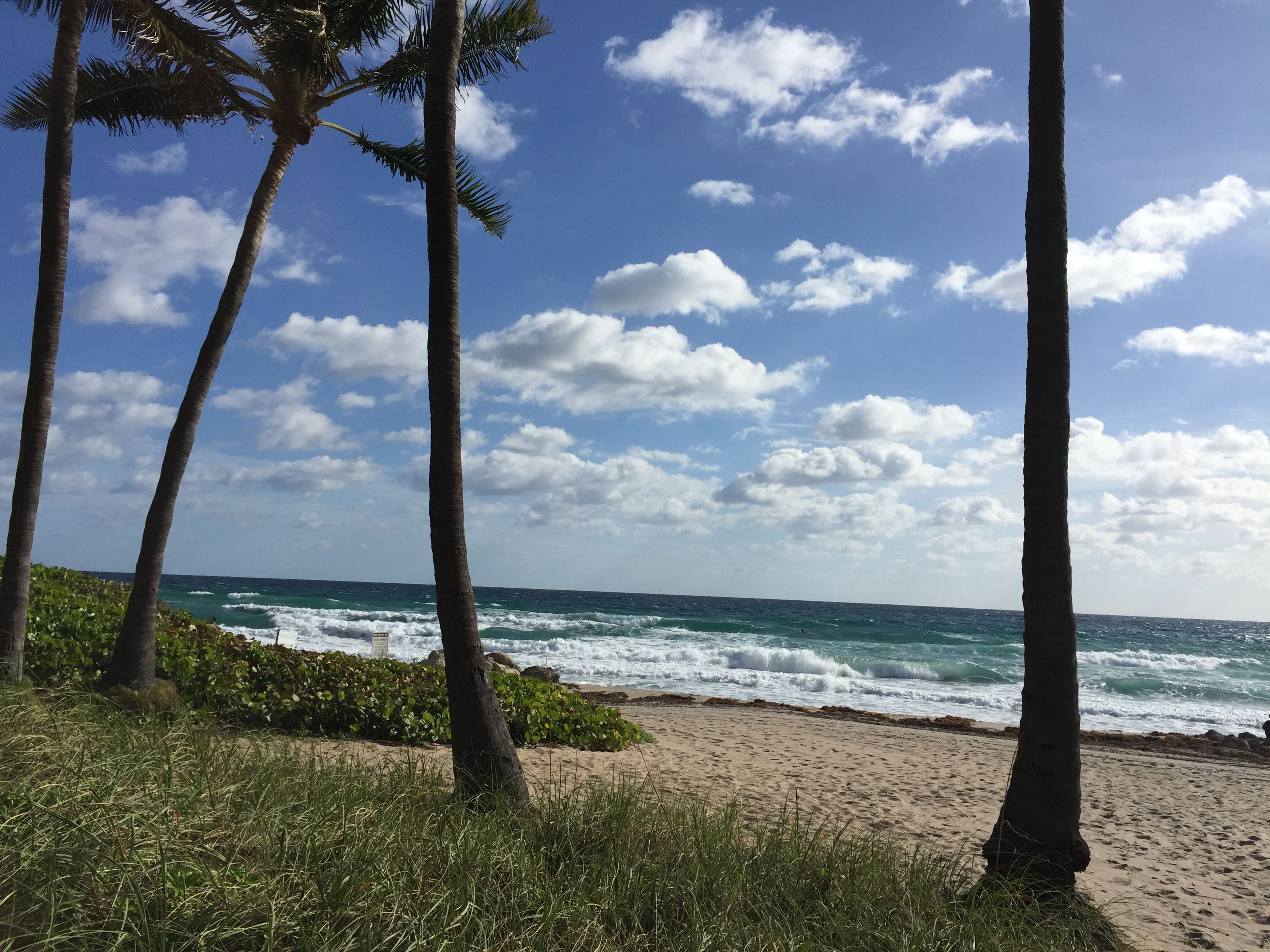 Pin by Christine Coyle on Deerfield Beach Florida | Pinterest ...