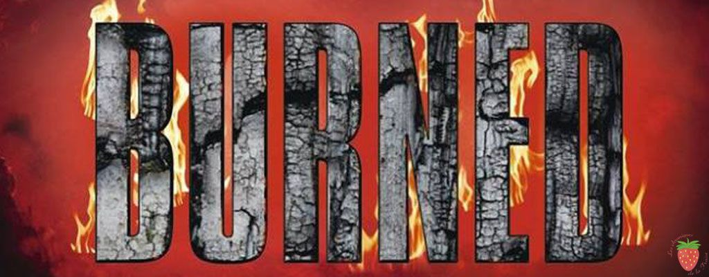 Burned tome 2 de karen marie moning l a s t c h r o n i c l e s burned tome 2 de karen marie moning fandeluxe Gallery
