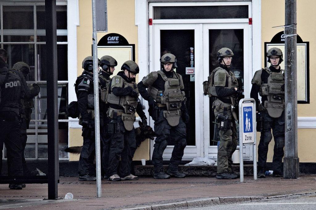 Politiets Aktionsstyrke (Denmark) Politi