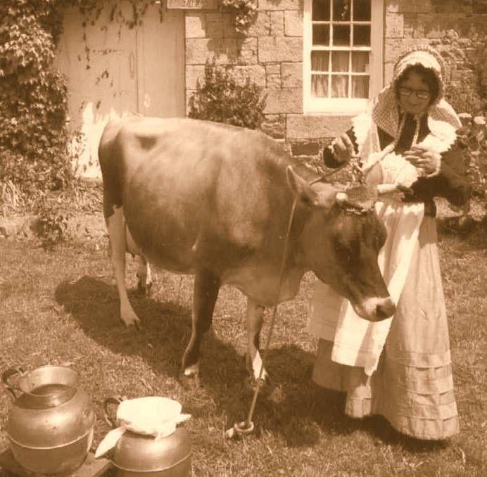 The farmers wife vintage barn show