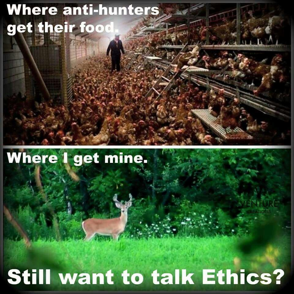 Funny Hunting Quotes Ethical Food  Zen  Pinterest  Deer Hunting Bow Hunting And