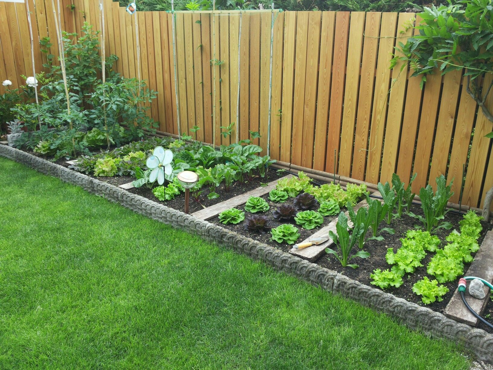 Vegetable Garden Landscape Ideas in 4  Home vegetable garden