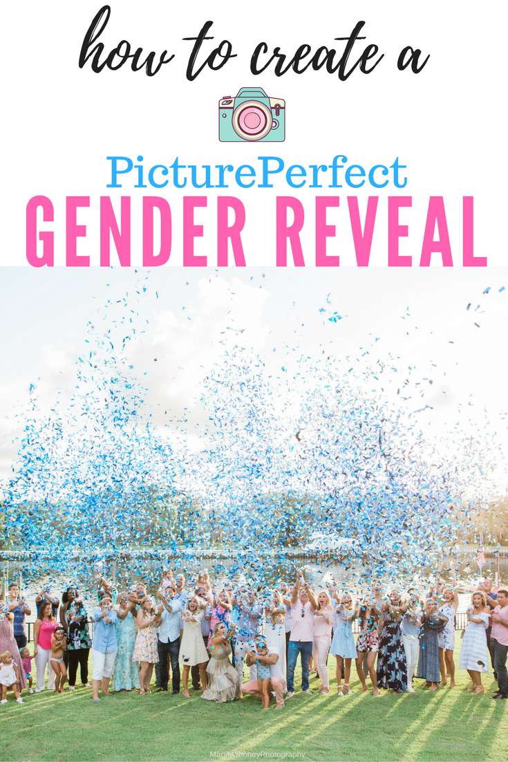 Create Your Perfect Gender Reveal Your Custom Gender Reveal Confetti Cannon For The Pict Confetti Gender Reveal Gender Reveal Photos Gender Reveal Photography