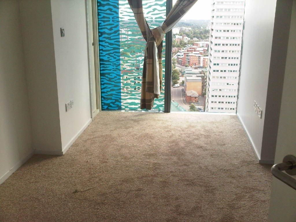 10 Astounding Hacks Carpet Cleaning Pet Stains Diy Carpet