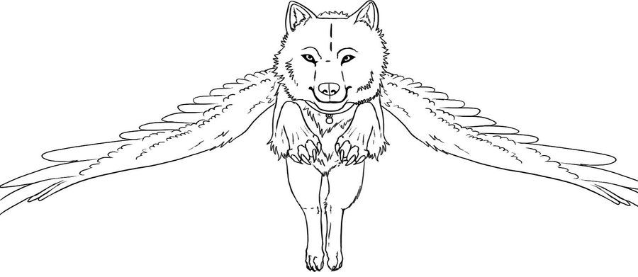 Free Winged Wolf Lineart By Sapphira Page On Deviantart Wolf Eye Drawing Cool Drawings Drawings