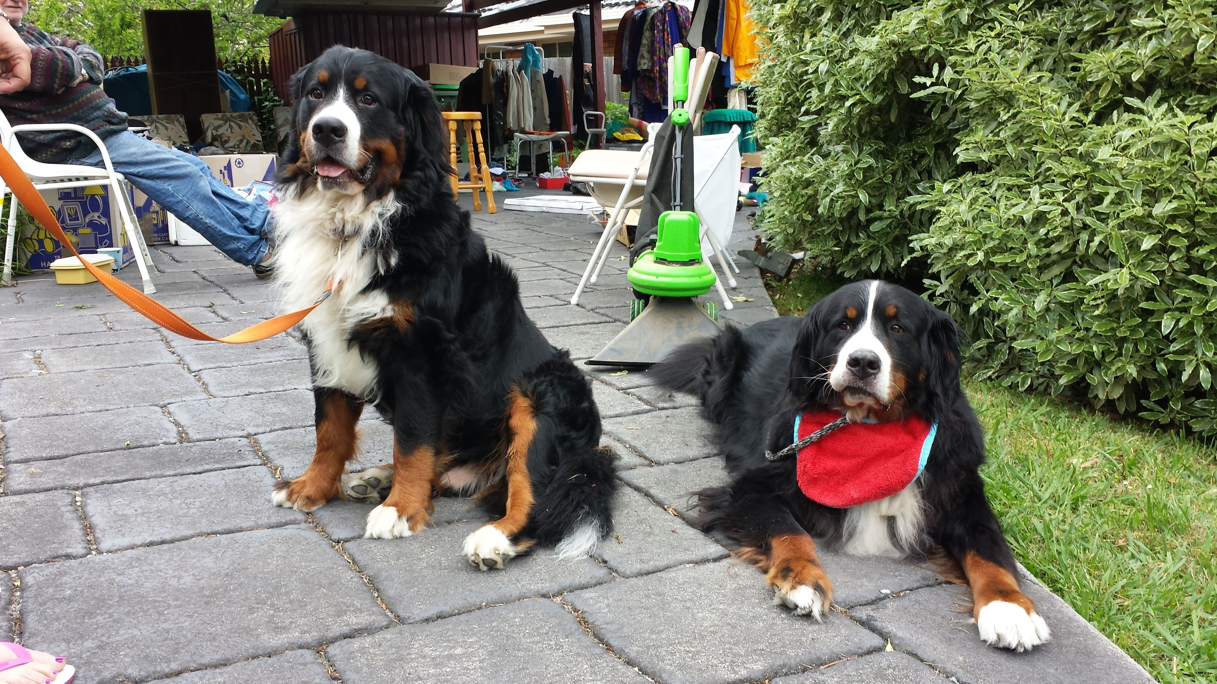 Beau (left) with his grandpa Fletch