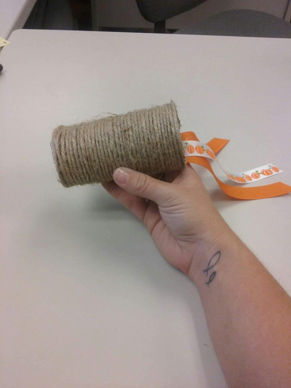 Easy Cat Toy Empty Toilet Paper Roll Jute Ribbon And Hot Glue