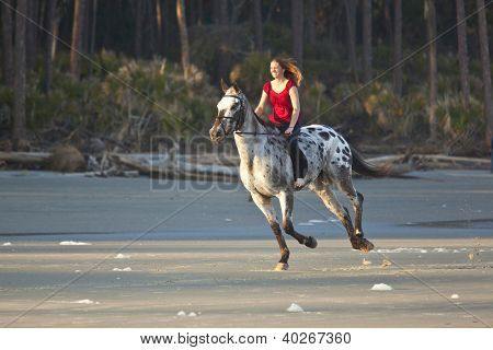 Photos of Appaloosa Horses runing on beach | Woman riding horse bareback on the beach Picture - Royalty Free Stock ...