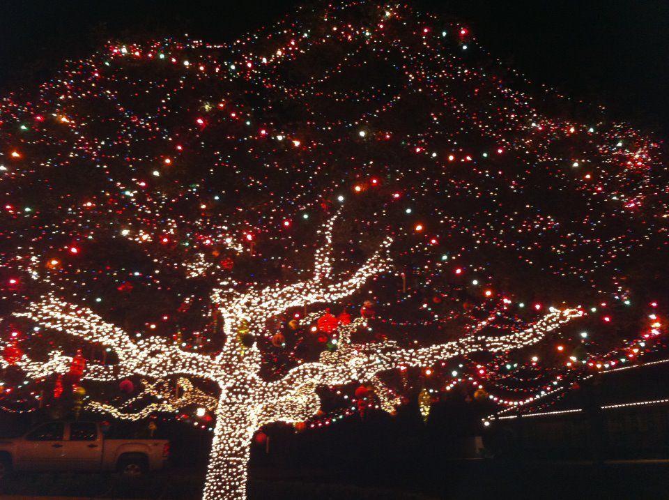 Christmas Fairy Lights · I call this the