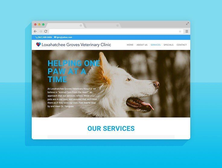 The services page for a quick veterinary clinic website we