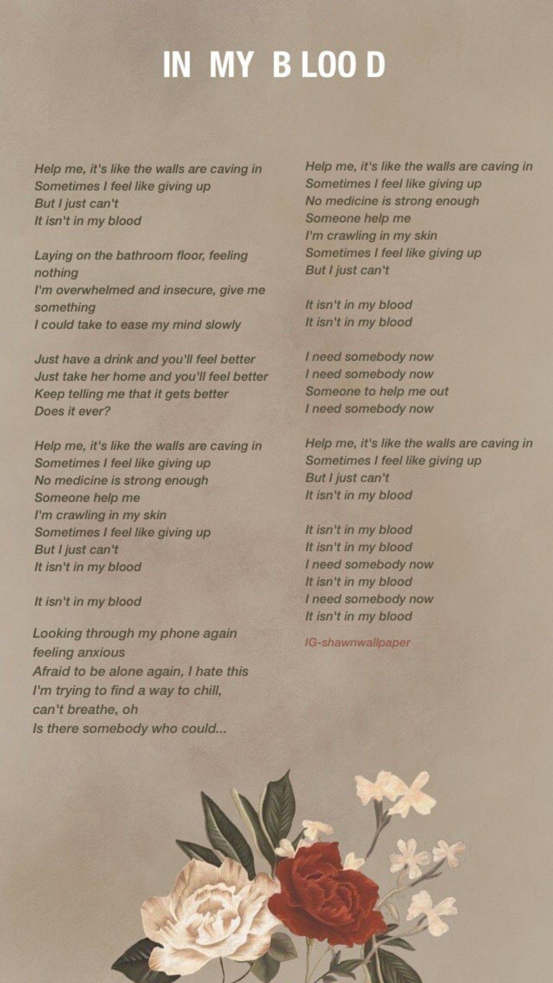 Pin By Sabrina Ella15 On Birthday Shawn Mendes Songs Shawn