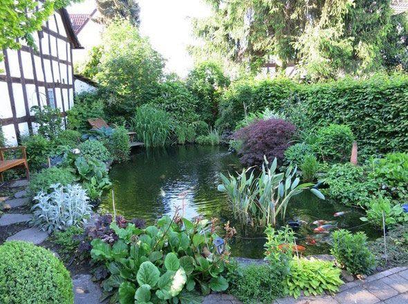 Die 5 Einfachen Schritte Zum Teich Ohne Algen Und Mit Glasklarem Wasser Gartenteich Teichlandschafts Garten