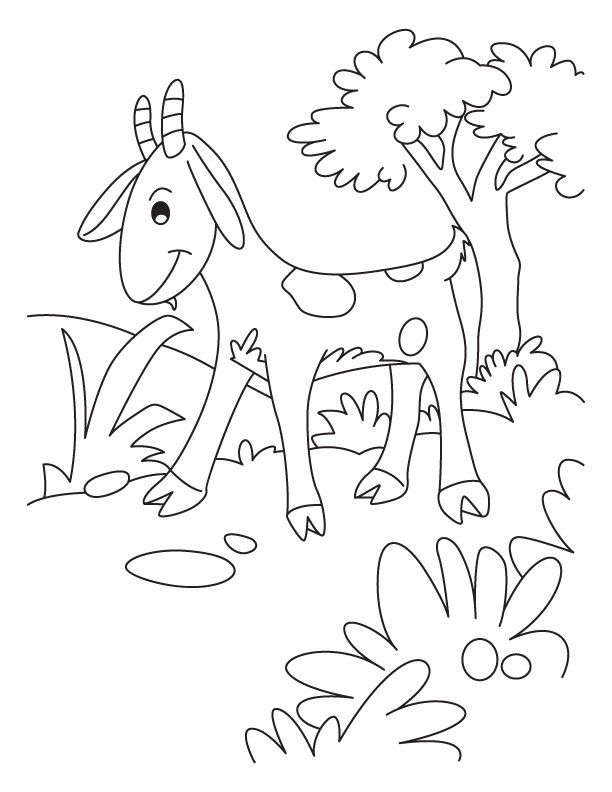 Cute Goat Coloring Page From Goats Category Select From 25123 Printable Crafts Of Cartoons Nature Animals B Animal Coloring Pages Cute Goats Coloring Pages