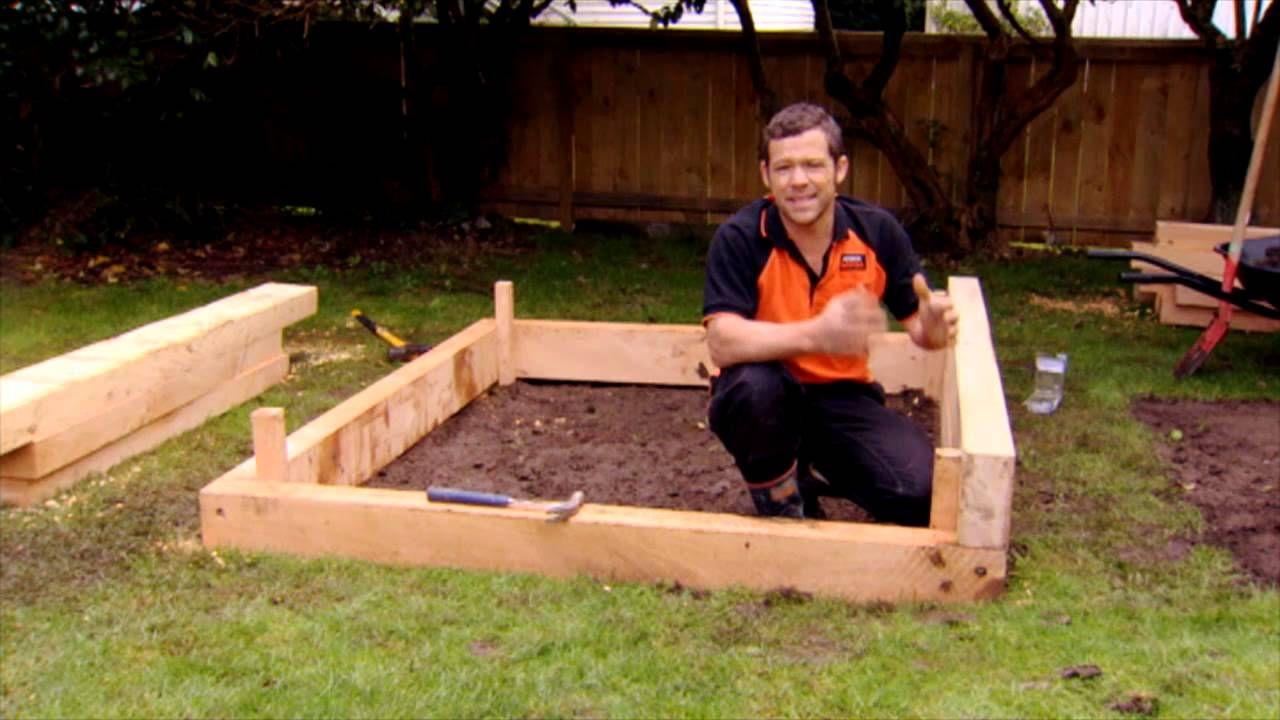 How to Build a Raised Vege Garden Garden layout