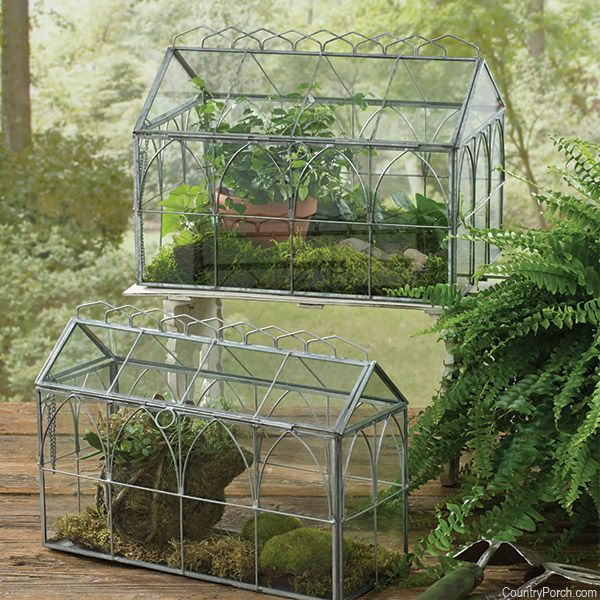 Gl Terrariums They Are So