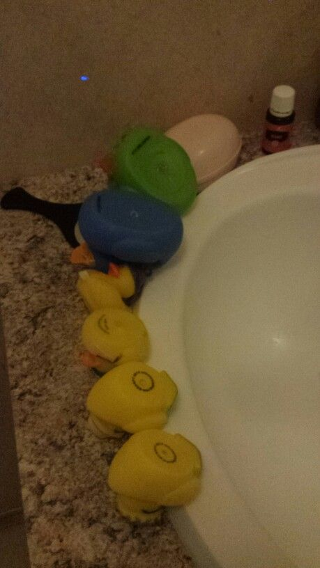 How to keep black mold from growing in your kids bath ducks... put a ...