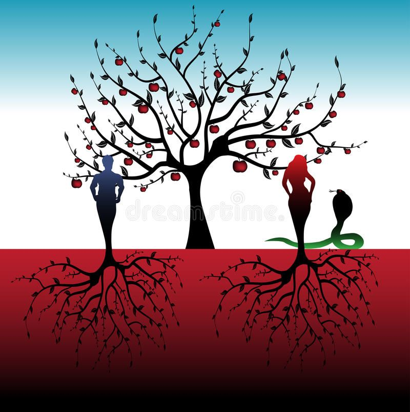 Adam And Eve. Abstract Colorful Illustration With Apple