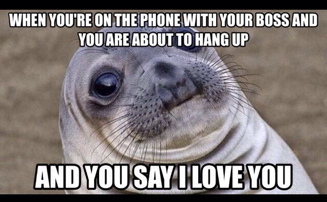 I Love You Boss Meme Lol Never Happened To Me But I Can T Even Imagine How Funny It Would Have Been With Any Of My Funny Pictures Funny Animals Animal