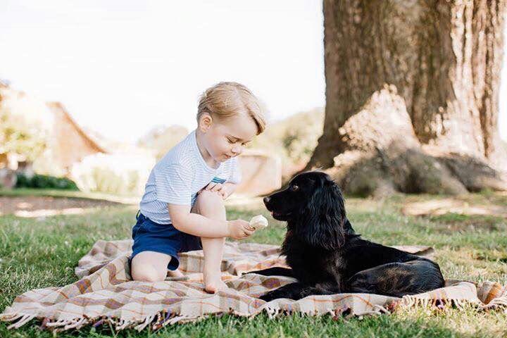 Prince George turns 3