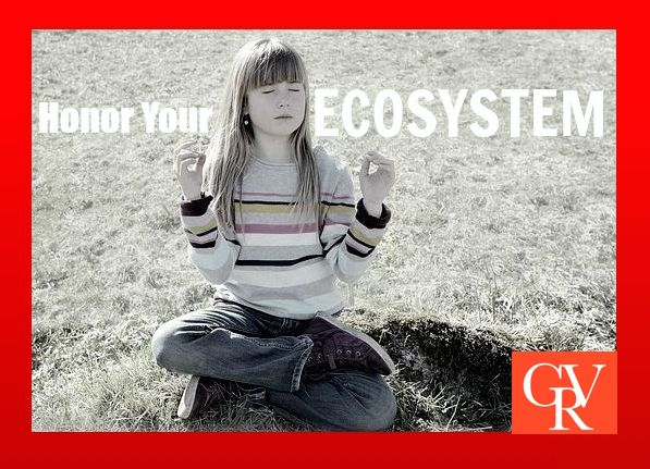 Honor Your Ecosystem