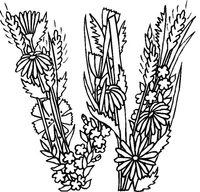 Alphabet Flower W Coloring Pages In this page you can find