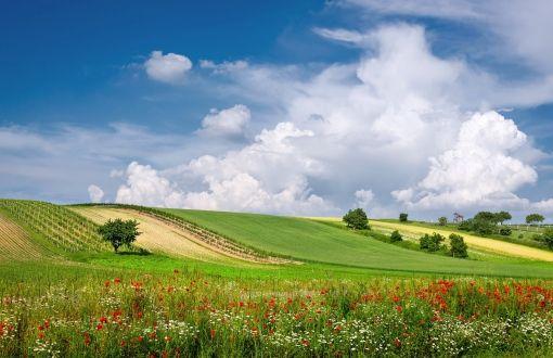 Austria meadow wallpapers | Wallpaper HD