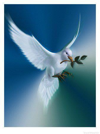 Una Paloma Blanca, que del cielo bajó, con sus alas moradas (o ...