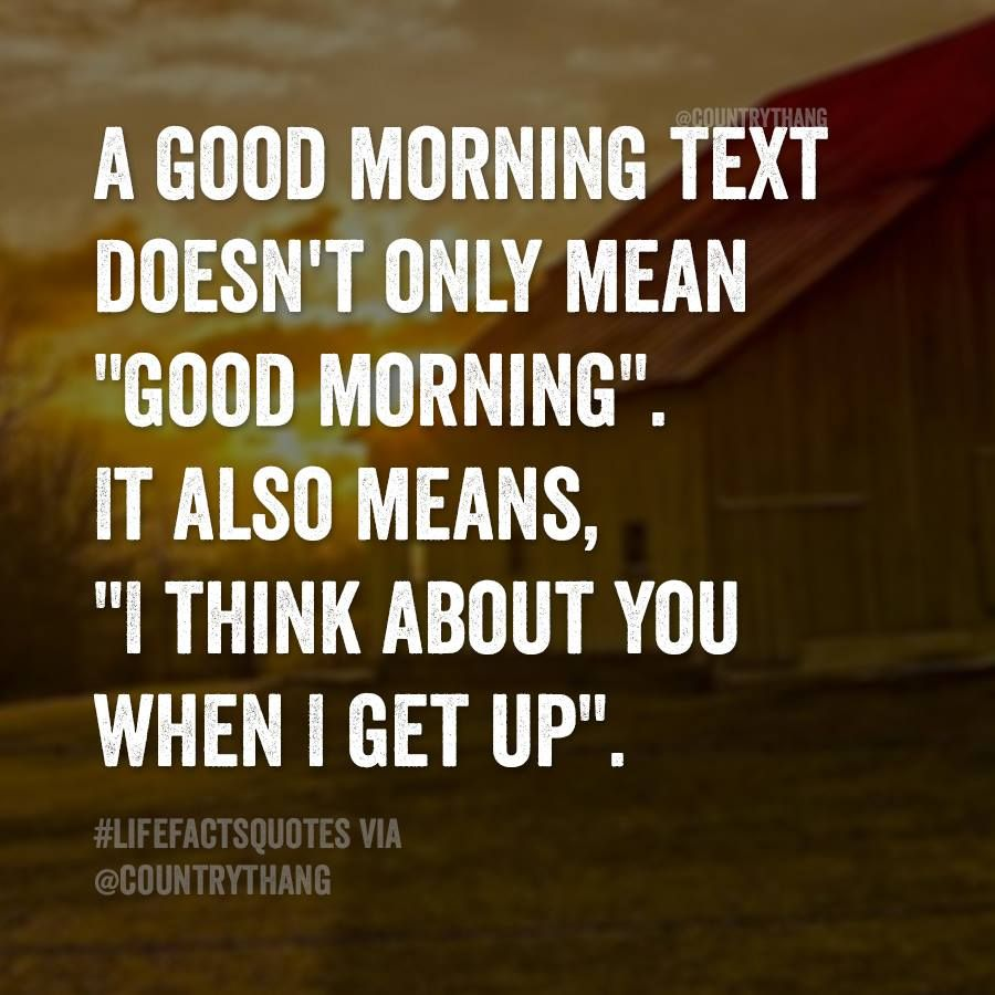 Good Morning My Love Quotes For Him Amusing It's My Favorite Quotes 3  Pinterest  Morning Texts