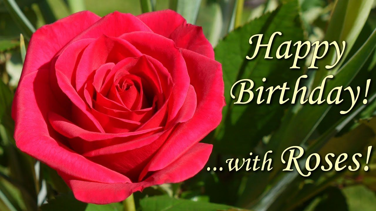Happy Birthday Song with Roses - beautiful flowers pictures wishing Happ...