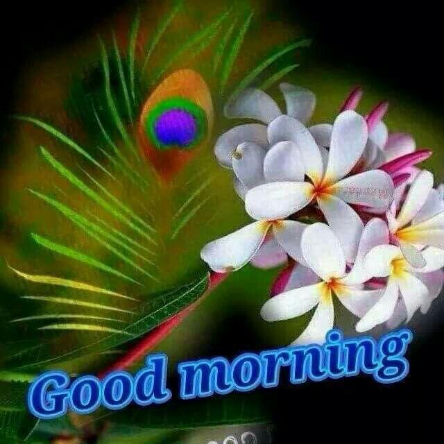 Pin By Liza Rath On Morning Beautiful Morning Messages Good Morning Husband Beautiful Morning Pictures