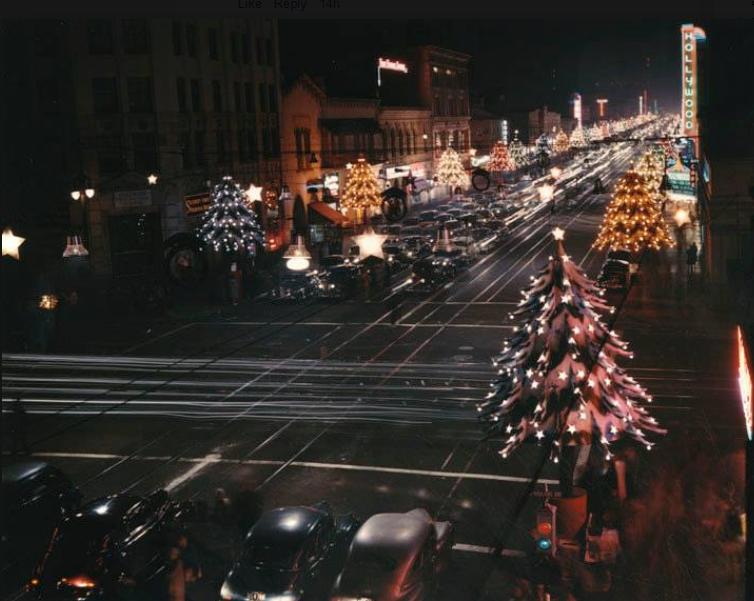 Christmas Tree Pickup Los Angeles