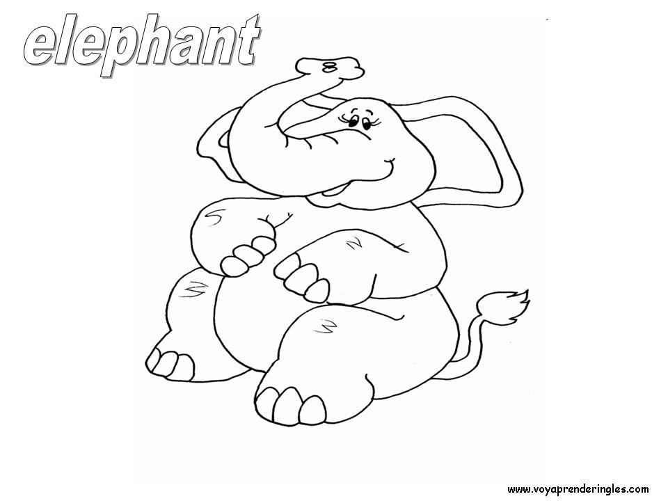Animales el elefante con su nombre en ingl s elephant for Nombres de arboles en ingles