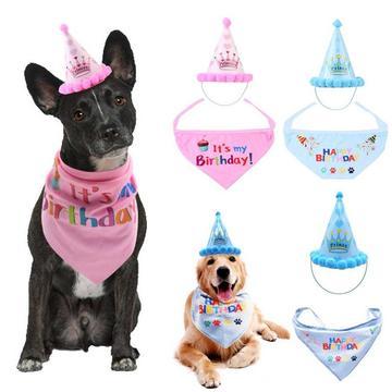 Cat Dog Birthday Party Costume Dog Birthday Dog Birthday Hat Animal Birthday