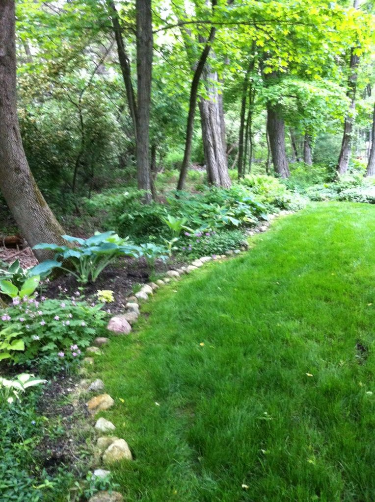 side yard and landscaping