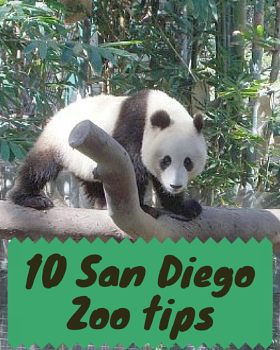 10 Tips For Visiting The San Diego Zoo Sixsuitcasetravel Big Family Travel San Diego Vacation Seaworld San Diego San Diego Travel